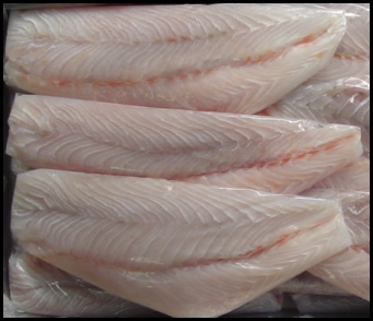 Frozen Barramundi Fillet 200/300